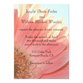Peaches and Cream Gerbera Flower 5.5x7.5 Paper Invitation Card