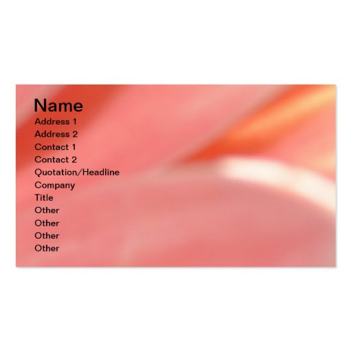 Peaches and Cream- Peachy Double-Sided Standard Business Cards (Pack Of 100)