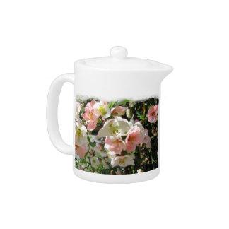 Peaches and Cream ~ Tea pot
