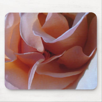 Peaches & Cream Petals Rose Mouse Pad