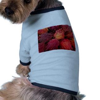 Peaches Extrude Pet T Shirt