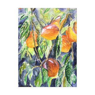 peaches fruit still life watercolor painting canvas print