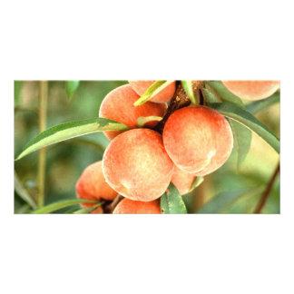 Peaches Photo Greeting Card