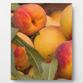 peaches plaque