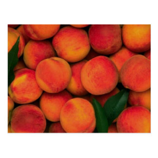 Peaches Postcard