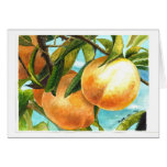 Peaches ready to be plucked card