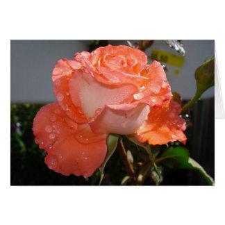 Peachrose Greeting Card
