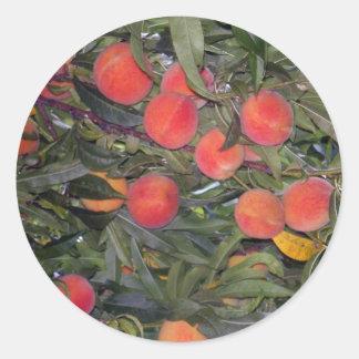 Peachs Classic Round Sticker