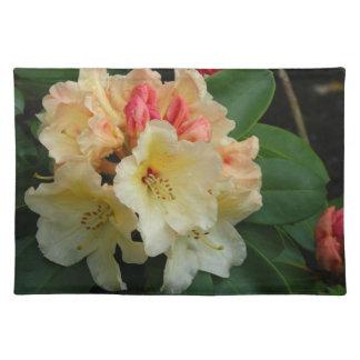 Peachy Cream Azaleas Placemats
