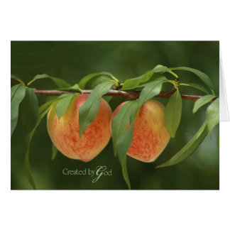 Peachy Day Greeting Card