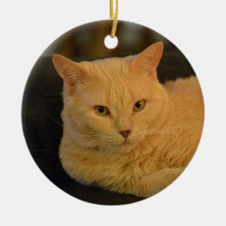 Peachy, light orange tabby ornament. ceramic ornament