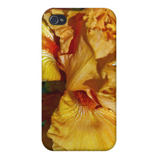 Peachy Petals Floral Design Covers For iPhone 4