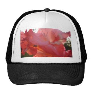 Peachy Pink Gladiola :) Trucker Hat