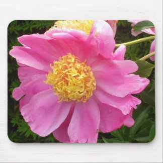 Peachy Pink Peony Mouse Pad