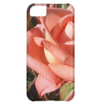 Peachy Pink Rose iPhone 5C Cover