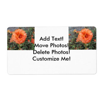 Peachy Portulaca Flower Shipping Label