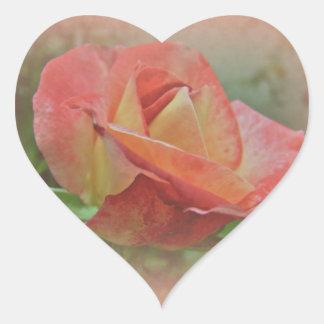 Peachy Rose Blossom Heart Sticker