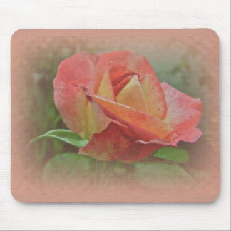 Peachy Rose Blossom Mousepads