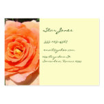 PEACHY ROSE BUSINESS CARD