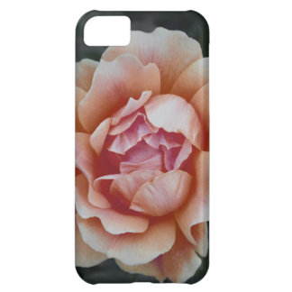 Peachy Rose Cover For iPhone 5C