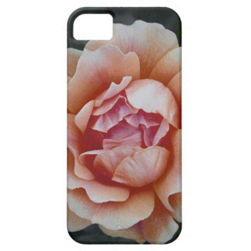 Peachy Rose iPhone 5 Case