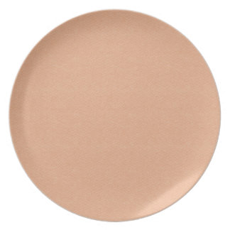 PEACHY SOFT SOOTHING SOLID ORANGE PASTEL BLUSH BAC PARTY PLATE