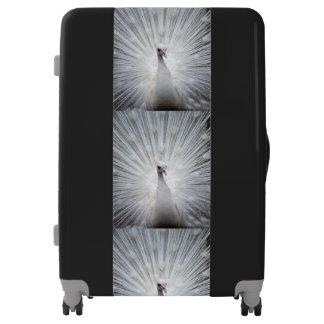 Peacock20160401 Luggage