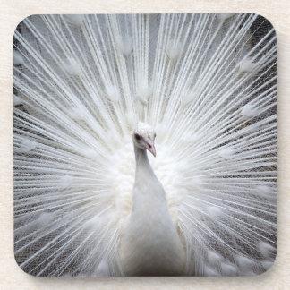 Peacock20160401 Posavasos De Bebidas