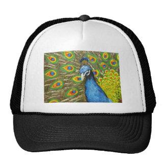 Peacock 20 gorros bordados