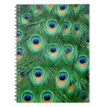 Peacock#2-Notebook Libros De Apuntes