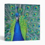 Peacock#3 Vinyl Binders