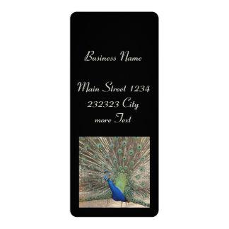 peacock 4x9.25 paper invitation card