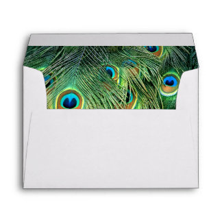 Peacock #5 envelope