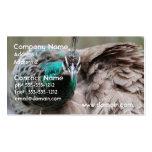 peacock-86.jpg business card template