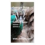 peacock-86.jpg business cards