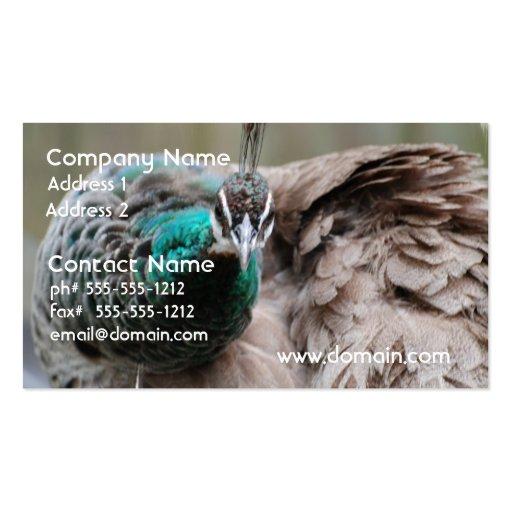 peacock-86.jpg tarjeta de negocio
