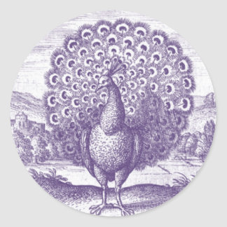 Peacock, a vintage engraving classic round sticker
