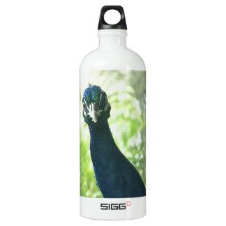 Peacock Aluminum Water Bottle