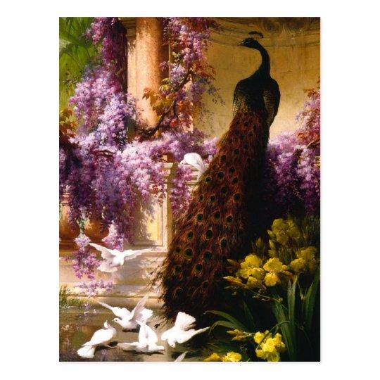 Peacock and Doves in a Garden Postcard