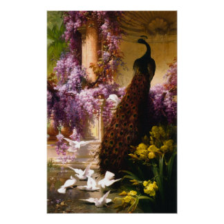 Peacock and doves Ina garden Poster
