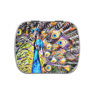 peacock and feathers artistic graphic candy tins