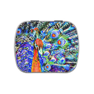 peacock and feathers orange artistic graphic jelly belly candy tin