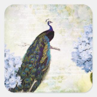 Peacock and hydrangea square sticker