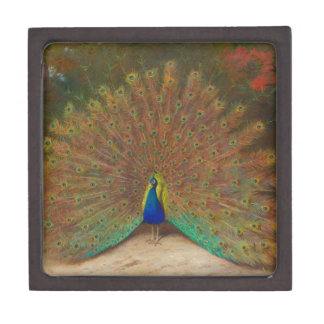 Peacock and peacock butterfly gift box