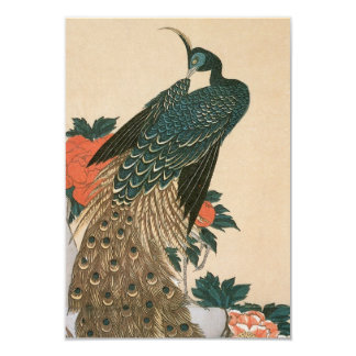 Peacock and Peonies by Ando Hiroshige, RSVP Announcements
