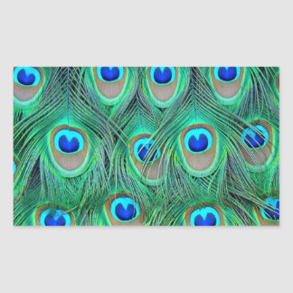 peacock animal print - feathers rectangle stickers