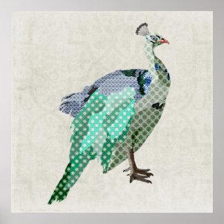 Peacock  Art Canvas Poster