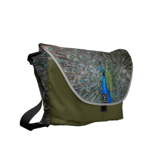 Peacock Back and Front Courier Bag