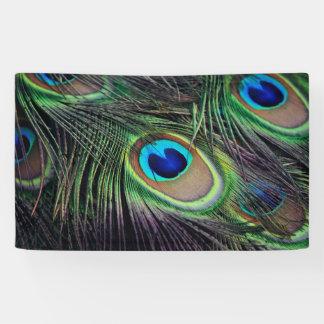 Peacock Banner