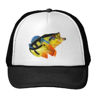 Peacock Bass 3 Trucker Hat